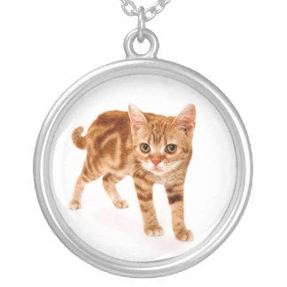 Pedante lindo de la foto del gato. Gatito rojo de  Colgantes