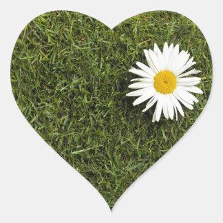 Pedazo en forma de corazón de césped con la flor pegatina en forma de corazón