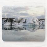 Pedazo grande de hielo del glaciar tapete de ratones