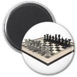Pedazos del tablero de ajedrez y de ajedrez: imanes