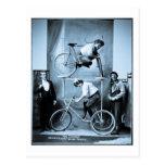 Pedestal móvil insano original de Mae Gordon Tarjetas Postales