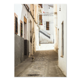 Pedestrian street of a typical Andalusian village Card