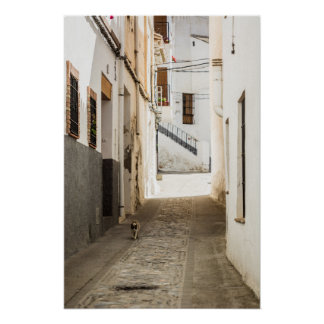 Pedestrian street of a typical Andalusian village Poster