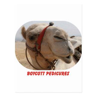 Pedicures del boicoteo postales