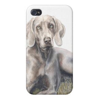 pedigree dog iPhone case Irish Weimaraner