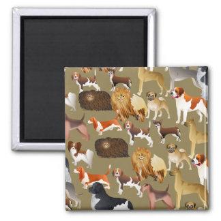 Pedigree Dog Wallpaper Magnets