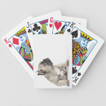 Pedigree puppy deck of cards