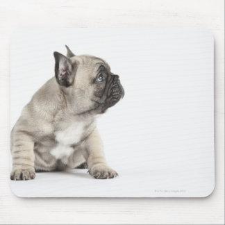 Pedigree puppy mouse pad