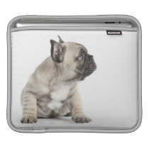 Pedigree puppy sleeve for iPads
