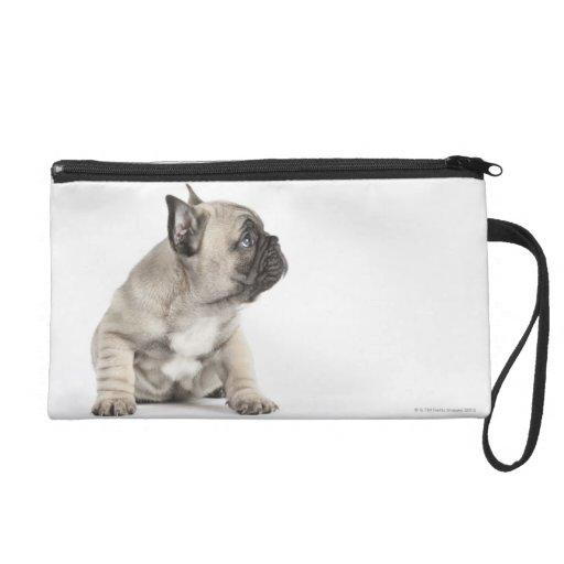 Pedigree puppy wristlet purse