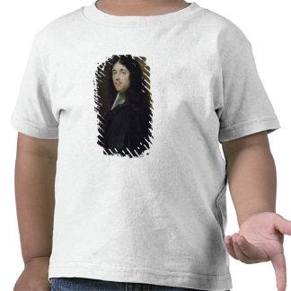 Pedro Fermat Camisetas