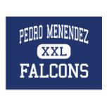 Pedro Menéndez - Falcons - alto - St Augustine Tarjeta Postal