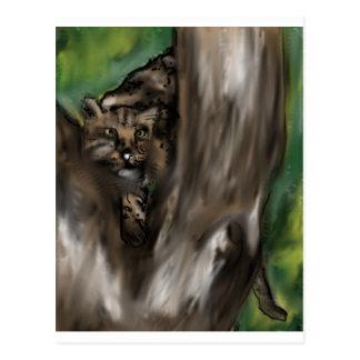 pee-ka-boo hide and seek leopard postcard