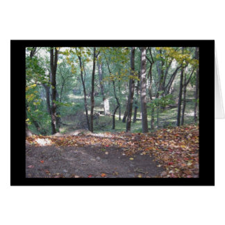 Peebles Island Forest, October 2008 Card