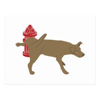 Peeing Dog Postcard