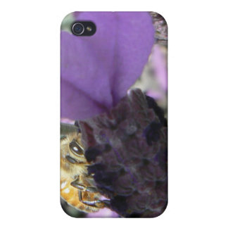Peek-A-Bee iPhone 4/4S Cover