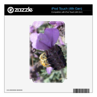 Peek-A-Bee iPod Touch 4G Skins