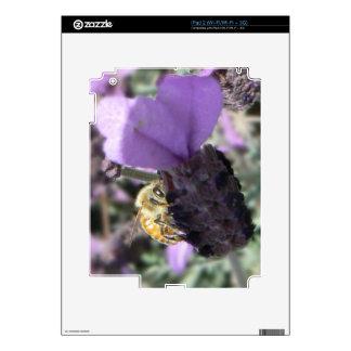Peek-A-Bee Skin For The iPad 2