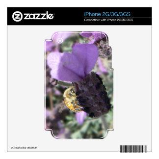 Peek-A-Bee iPhone 2G Skins