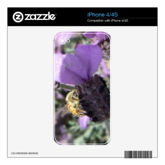 Peek-A-Bee Decals For The iPhone 4S