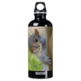 Peek-a-boo! Aluminum Water Bottle