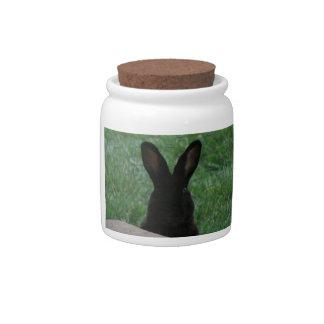 Peek-a-boo Candy Jar