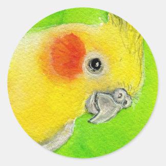 Peek-a-boo Cockatiel Classic Round Sticker