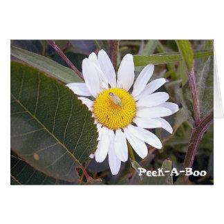Peek-A-Boo Daisy Card