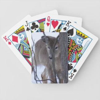 peek-a-boo deer. bicycle playing cards
