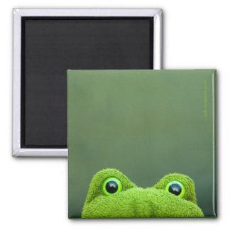 Peek-a-Boo Frog | Square Magnet Design