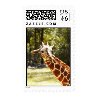 Peek-a-Boo Giraffe Postage Stamp