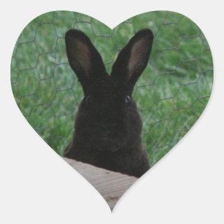 Peek-a-boo Heart Sticker