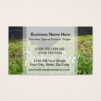Peek a boo horse nose under fence business card