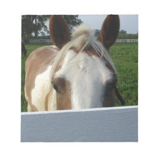 Peek a Boo Horse Note Pad