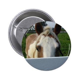 Peek a Boo Horse Pinback Buttons