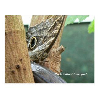 Peek-A-Boo! I See You! Postcard