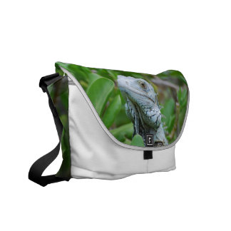 Peek-a-boo Iguana Courier Bag