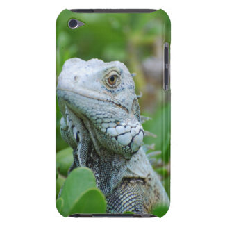 Peek-a-boo Iguana iPod Touch Case