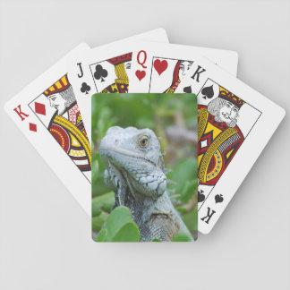 Peek-a-boo Iguana Poker Deck
