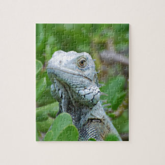 Peek-a-boo Iguana Puzzle