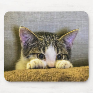 Peek a boo Kitty Mouse Pad
