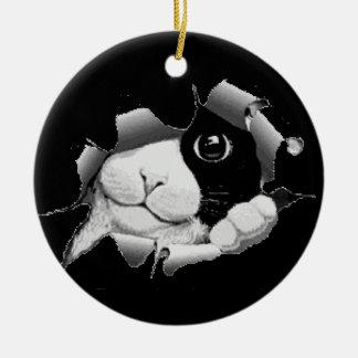 Peek A Boo Kitty Christmas Ornament