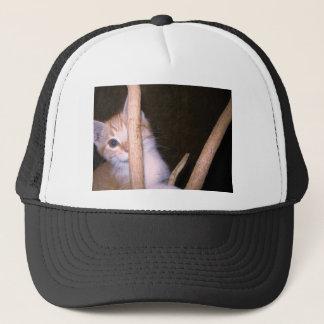 peek a boo kitty trucker hat