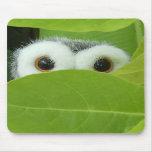 Peek-A-Boo Mouse Pad