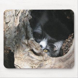 Peek-a-boo Mousepad