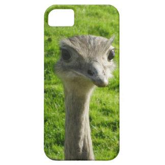 Peek-a-boo ostrich phone case