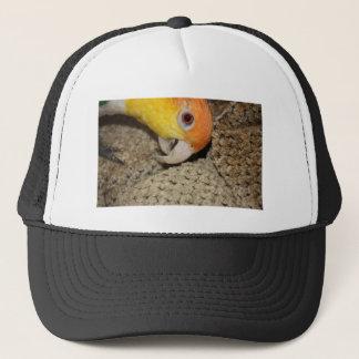 Peek-a-Boo Parrot Caique Trucker Hat
