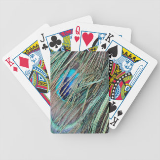 Peek a Boo Peacock Feathers Bicycle Playing Cards
