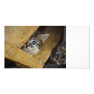 Peek-A-Boo Personalized Photo Card