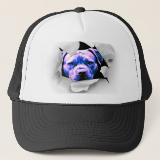 Peek A Boo Pit Bull Hat - Fun and Great Looking